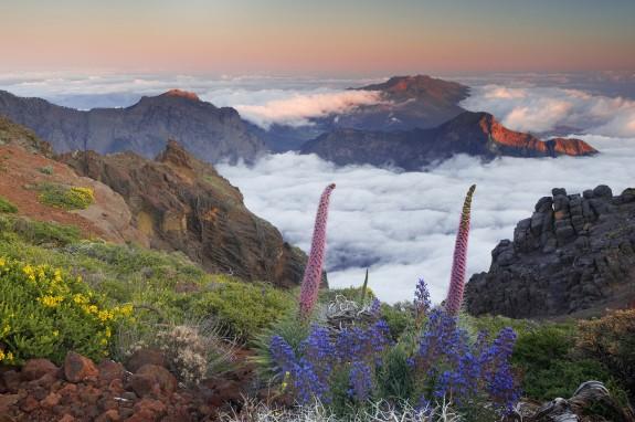 01 Isla de La Palma, Canarias